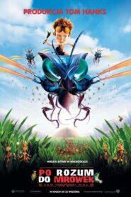 Po rozum do mrówek
